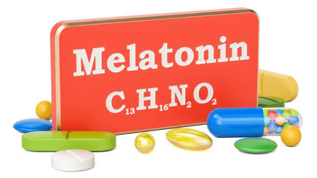 melatonin_alopesi-loulou_pet-2
